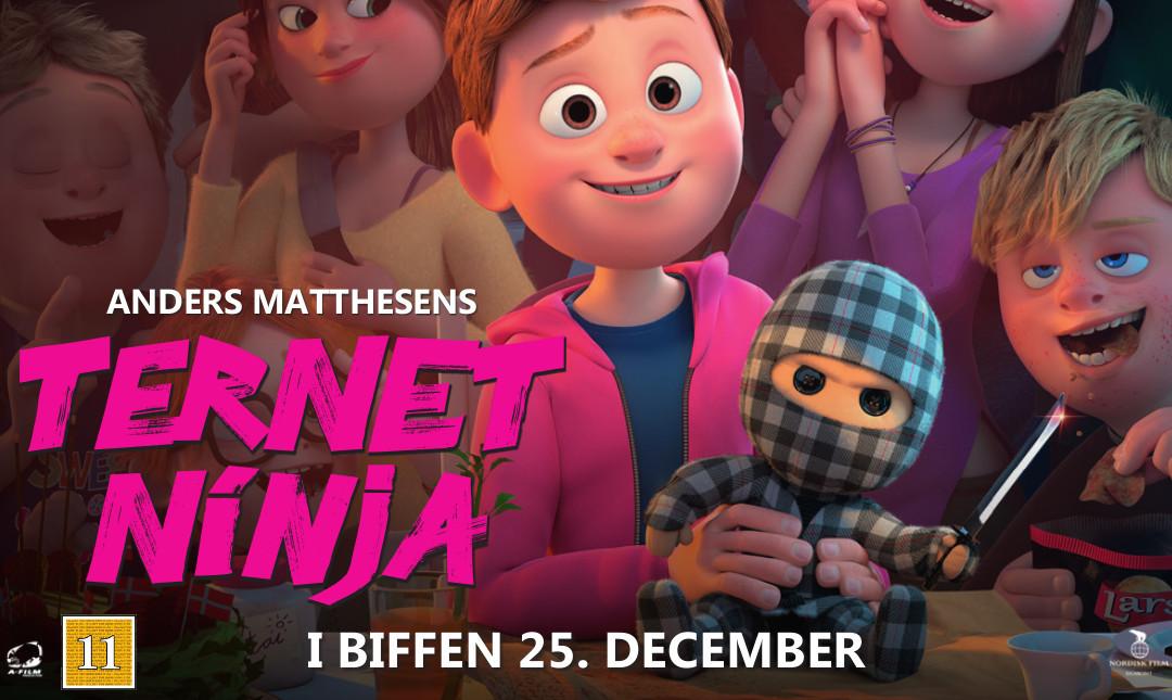 Ternet ninja_slide_poster