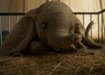 Dumbo - org. version